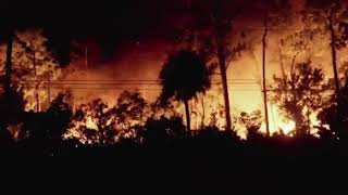 Close-up On The Horrific Brush Fire In Naples, Florida