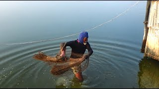 Net Fishing | Catching Fish With Cast Net | Net Fishing in the village (Part-111)