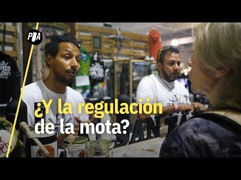 ¿Dónde está la regulación de la marihuana? La duda que se planteó en ExpoWeed