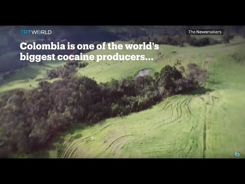 Picture This: Colombia Drugs Bust