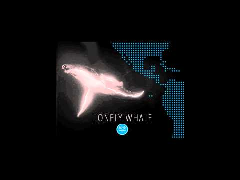 Answering the Call of 52 (51.75hz) - The Worlds Loneliest Whale