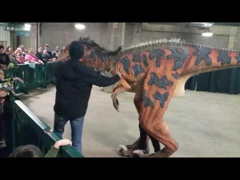 Dakotaraptor JQ at KC