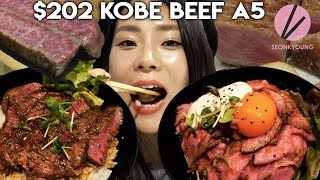 $202 Michelin Star Kobe Beef A5 (The BEST Quality Kobe Beef!) Vs. $7 Steak