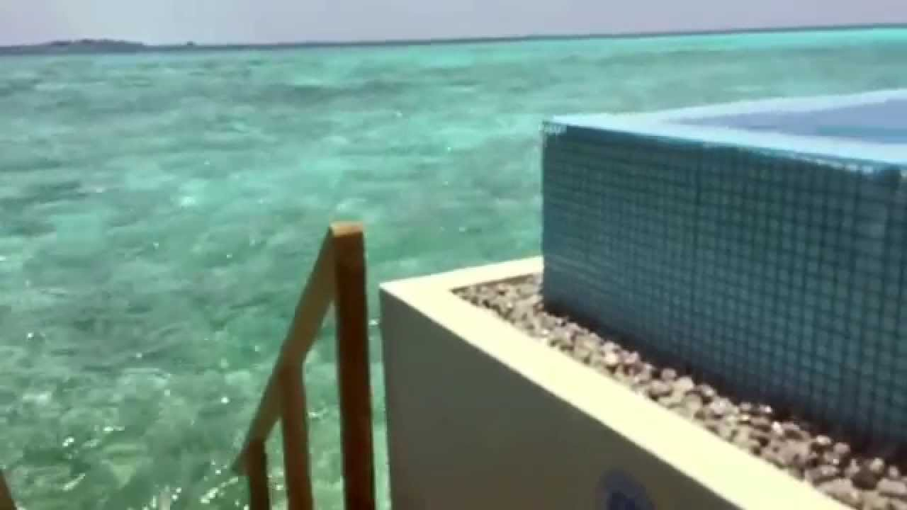 velassaru over water bungalow with pool in the maldives. Black Bedroom Furniture Sets. Home Design Ideas