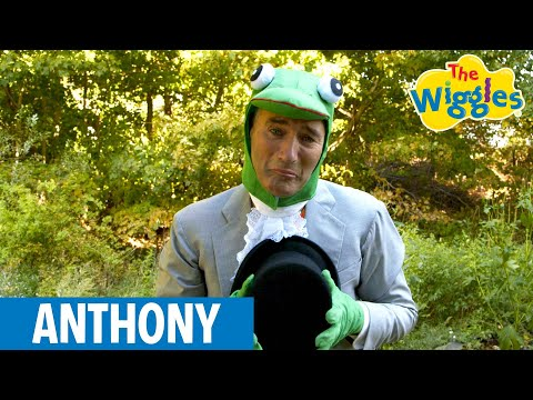 The Wiggles: Anthony Rowley