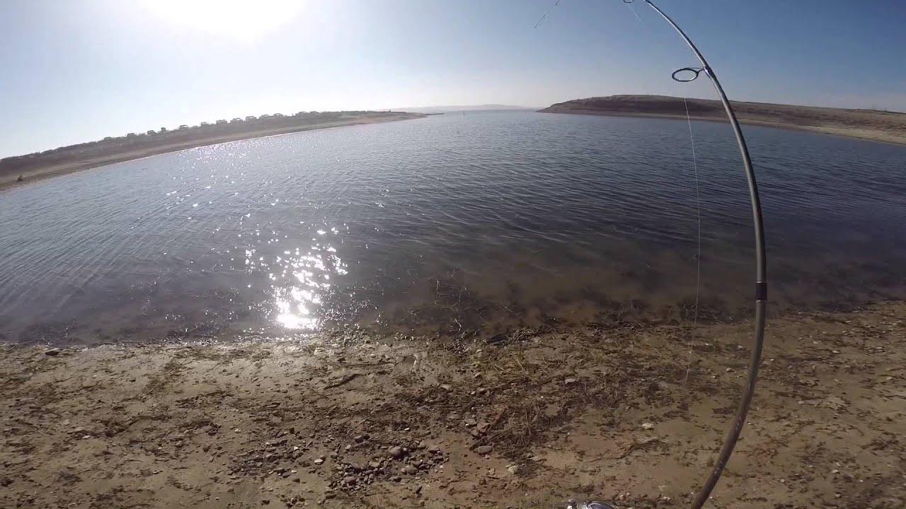 Lake camanche trout fishing youtube for Lake camanche fishing