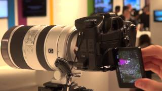 Sony A77 at IFA 2011 - Which first look review