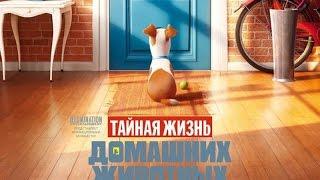 Movie to go. Тайная жизнь домашних животных . Обзор ( The Secret Life of Pets )