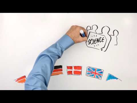 How to End Overfishing in the EU | A Whiteboard Explainer