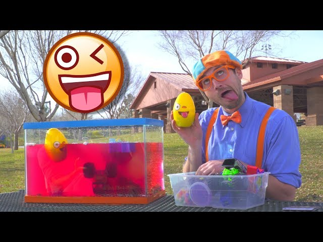 A Blippi Compilation of Educational Videos for Toddlers | Sink or Float and more!