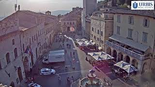 Preview of stream Assisi Live Stream