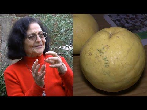 La historia de los pomelos gigantes que son furor en Paraná
