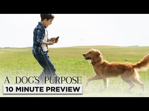 A Dog's Purpose | 10 Minute Preview | Film Clip | Own It Now On Blu-ray, DVD & Digital