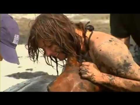 horse rescue - beach in Australia (Nicole Graham and Avalon)
