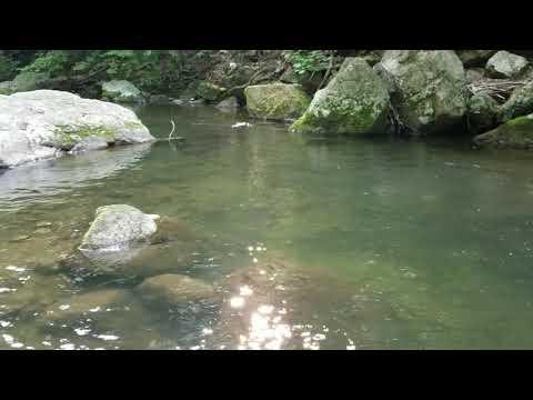 Tye River At Crabtree Falls Campground(1)