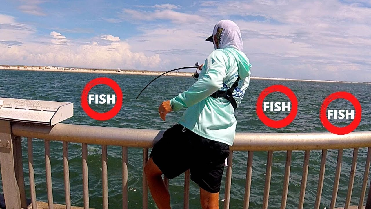 Fishing a Seawall with LIVE Minnows for Tasty FISH