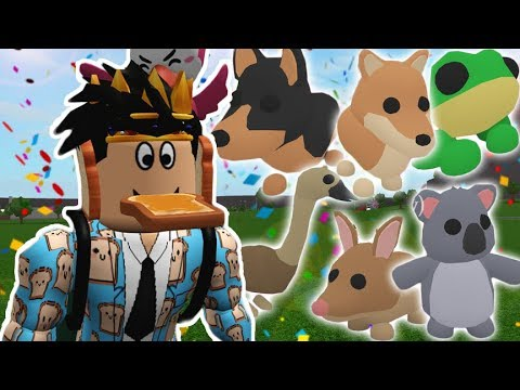 The New Pets Aussie Egg Update In Adopt Me I Got No Legendary Pets I M Sad Youtube