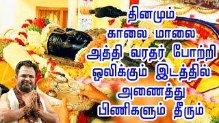 அத்தி வரதர் போற்றி   அத்தி வரதர் பாமாலை   வரதராஜ பெருமாள்   Athi Varadar Pottri