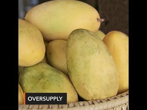 DA targets at least 1 million kilos of excess mangoes to be sold