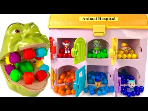 Thumbnail: Best Learning Colors for Children - Paw Patrol Hospital Shrek Eats Rainbow Gumballs Teeth Change