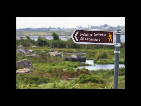 Galway Triathlon 2010