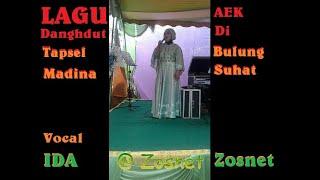 Download Lagu Tapsel Aek Di Bulung Suhat cover Ida
