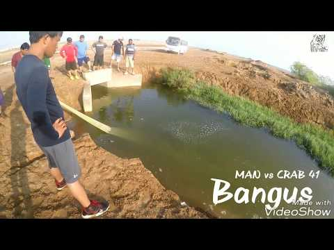 MAN vs CRAB 41 - Bangus