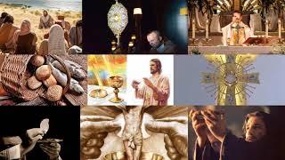 Zrno Riječi, Susret s Izvorom, 18. nedjelja kroz godinu B