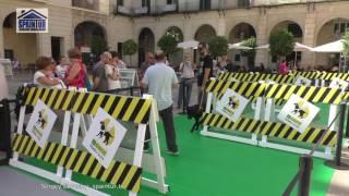 Выставка собак  поводырей для инвалидов, в Аликанте, на площади у мэрии