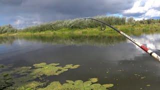 Рыбалка на ЩУКУ в СЕНТЯБРЕ на ОКЕ 2021 ЛОВЛЯ ЩУКИ НА ЛАЙТ ДЖИГ