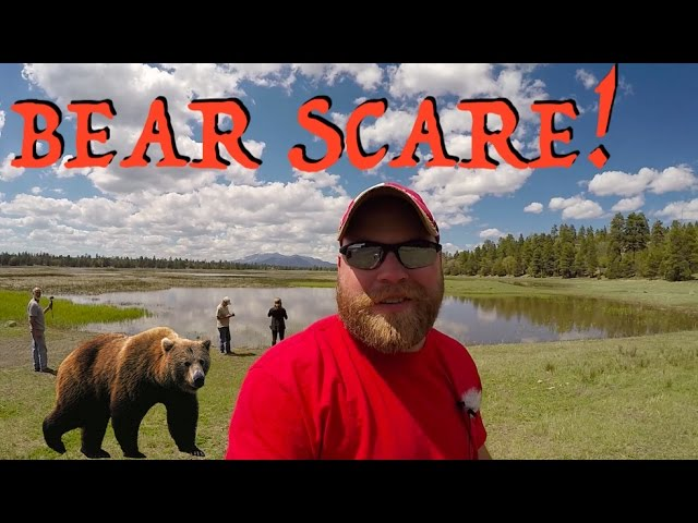 craters-errands-new-campsite-bear-scare
