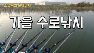 [조감독의 붕어낚시]평택호 모원리/백석포수로