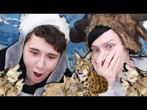 Download Youtube: GAMINGMAS BEGINS! - Dan and Phil Play: Shelter 2