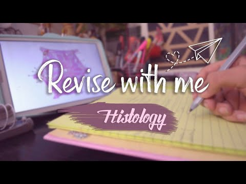 Revise with me  - Real time + Relaxing studying music [Finals edition - Pharmacy] | Reem