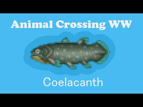 Animal Crossing WW : Catching A Coelacanth