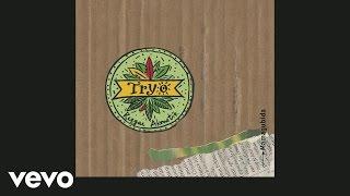 Tryo - La main verte (Live) [audio]