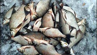 Зимняя рыбалка на леща 14 марта Оскол Закрытие