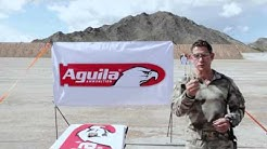Aguila's 380 Auto Full Metal Jacket
