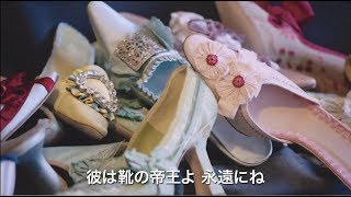 Bunkamuraル・シネマ 12/23(土・祝)よりロードショー「マノロ・ブラニク トカゲに靴を作った少年」予告編
