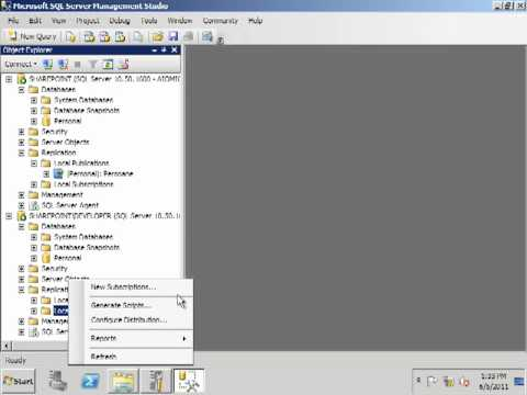 Configure Data Replication in SQL Server 2008 R2