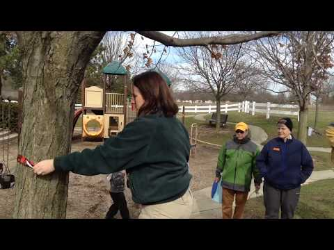 Sarah Hunter, naturalist for Columbus and Franklin County Metro Parks, part 1 of 2
