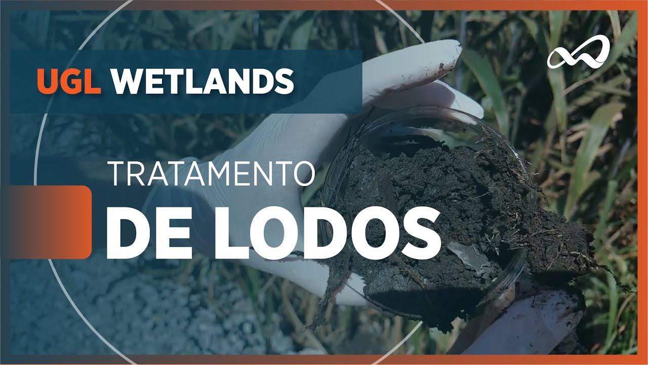 WETLANDS CONSTRUÍDOS PARA TRATAMENTO DE LODOS