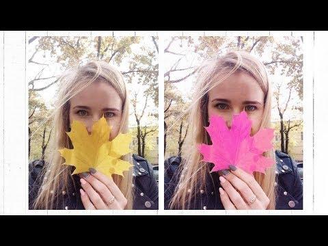 Изменение цвета на фото в PicsArt
