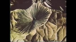 Свято-Успенская Почаевская Лавра. 1984 г. Документальный фильм.(, 2016-05-13T15:30:13.000Z)