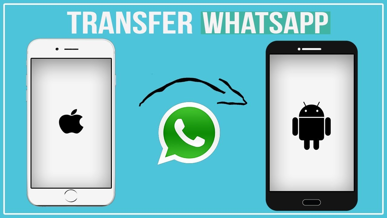 Transfer Whatsapp from iPhone to Android 2019 - How to Move Whatsapp to new  Phone
