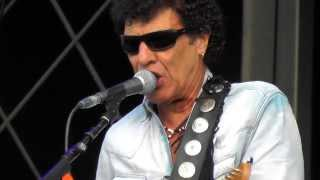 In the Summertime, Mungo Jerry - with Status Quo at Betley, 9th August 2013