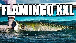 Monster Tarpon Fishing the Florida Everglades (TV Version)