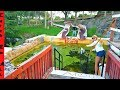SAVING FISH in ABANDONED WATER PARK!