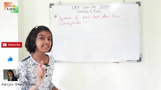 CBSE Science Class VII Ch 1 Nutrition of plants part-1