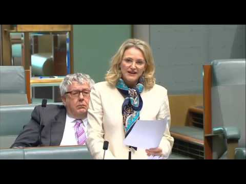 Offshore detention 'a festering wound': Melissa Parke valedictory speech